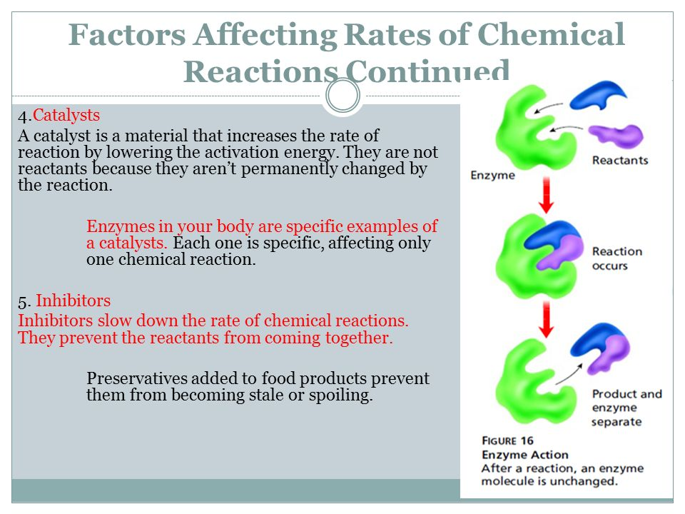 factors affecting the rate of catalase activity essay Factors affecting the rate of enzyme activity prediction: as the temperature increases the rate of enzyme activity will also increase, thus increasing the rate of reaction however, if the temperature is too high the enzyme will denature.