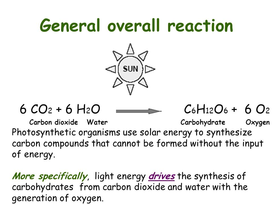Photosynthesis the light reactions ppt video online download general overall reaction publicscrutiny Gallery