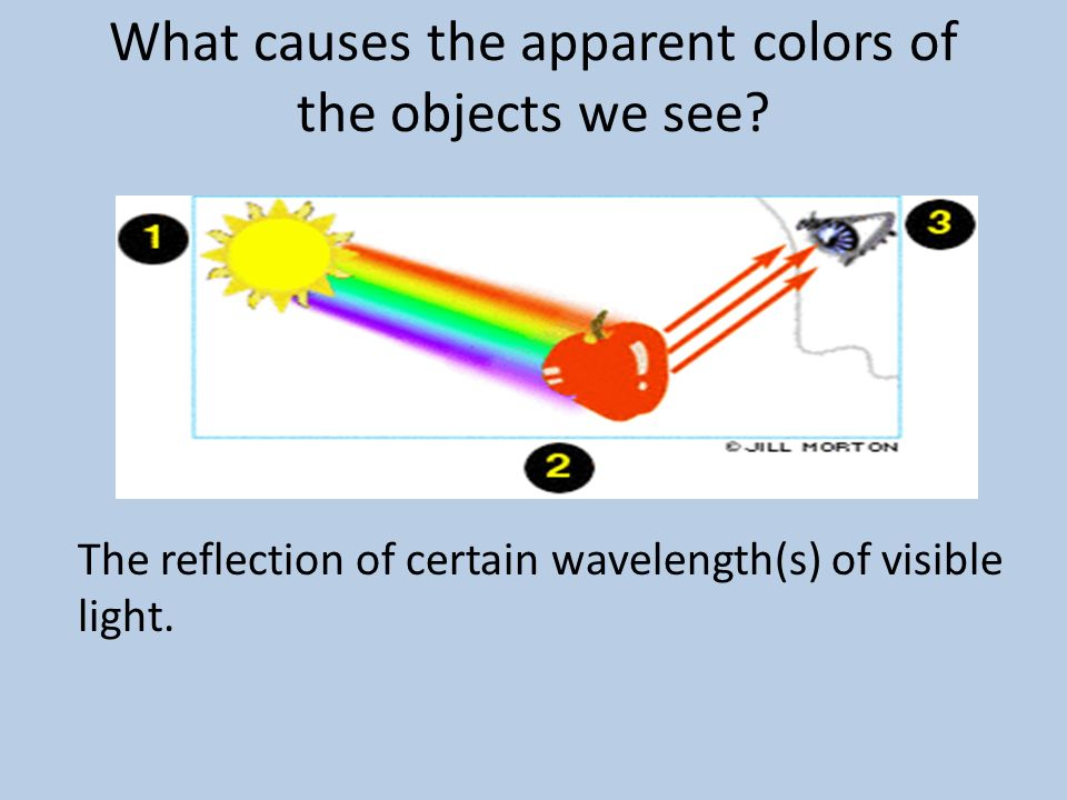 What causes the apparent colors of the objects we see