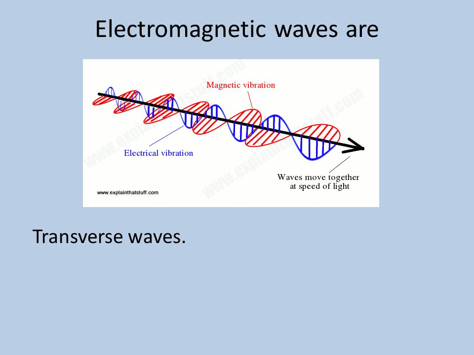 Electromagnetic waves are