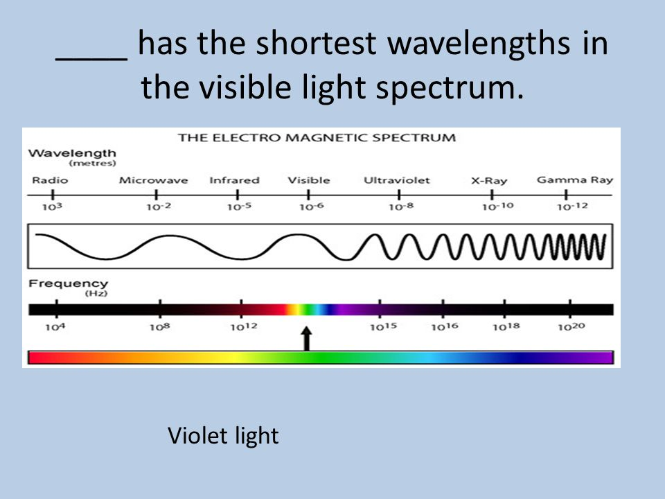 ____ has the shortest wavelengths in the visible light spectrum.