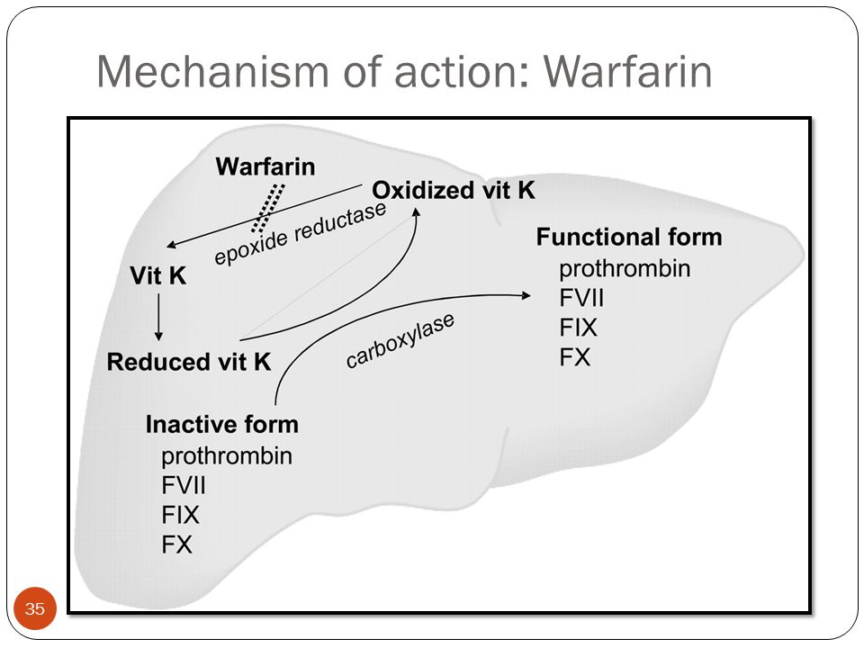 Mechanism of action: Warfarin