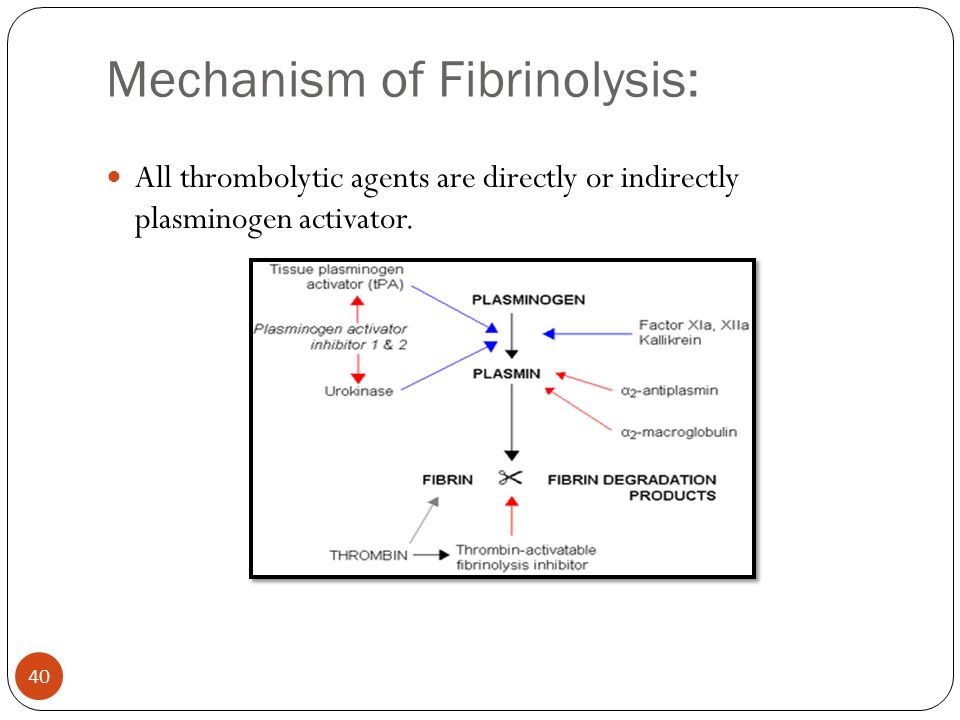 Mechanism of Fibrinolysis: