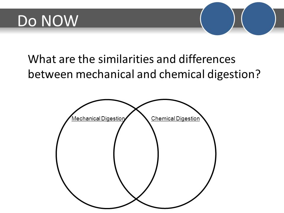 Do now date 1207 the function of the digestive system is to break do now what are the similarities and differences between mechanical and chemical digestion ccuart Image collections