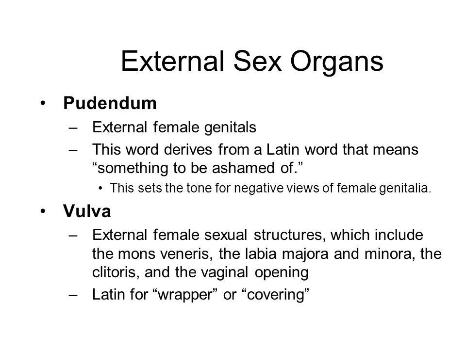 Female Anatomy and Physiology - ppt video online download