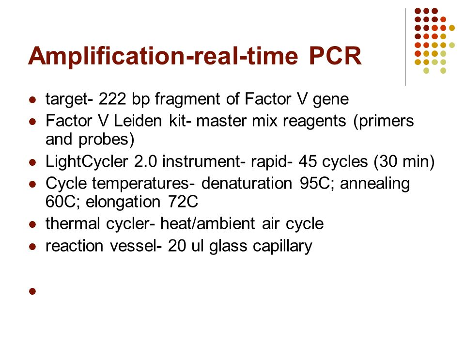 9 Amplification Real Time PCR