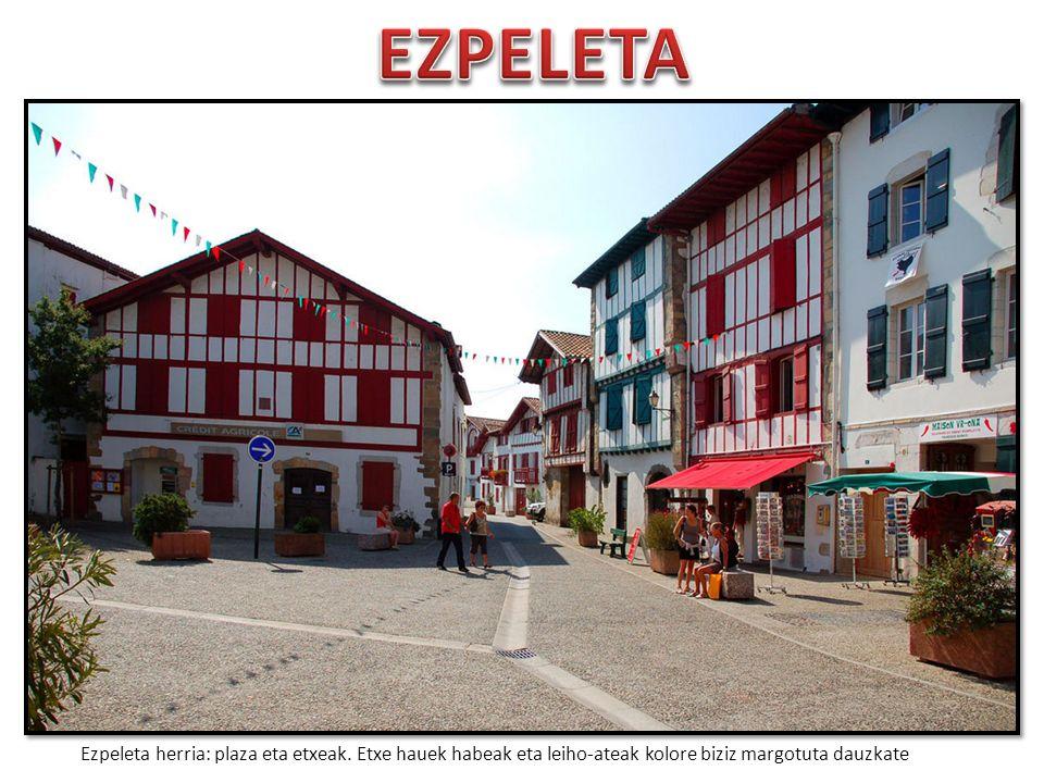 Pueblos de España que merecen ser visitados - Página 3 EZPELETA+Ezpeleta+herria%3A+plaza+eta+etxeak.