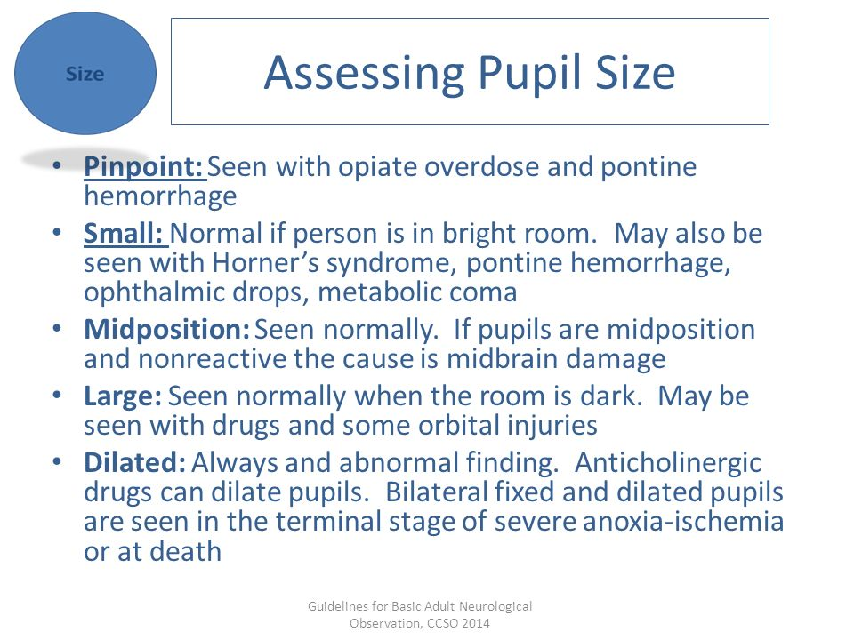 Guidelines for Basic Adult Neurological Observation, CCSO ppt video