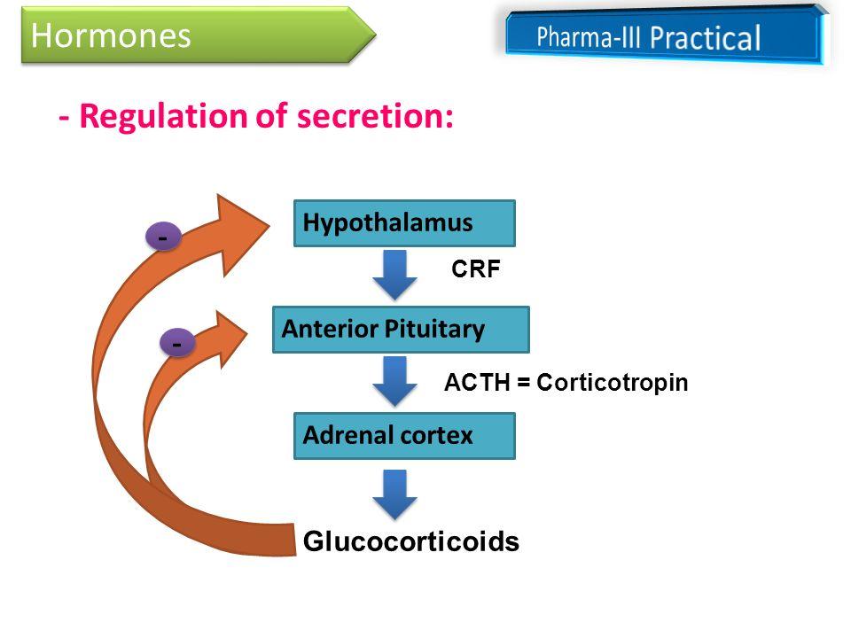 Adrenocortical Hormones Ppt Download