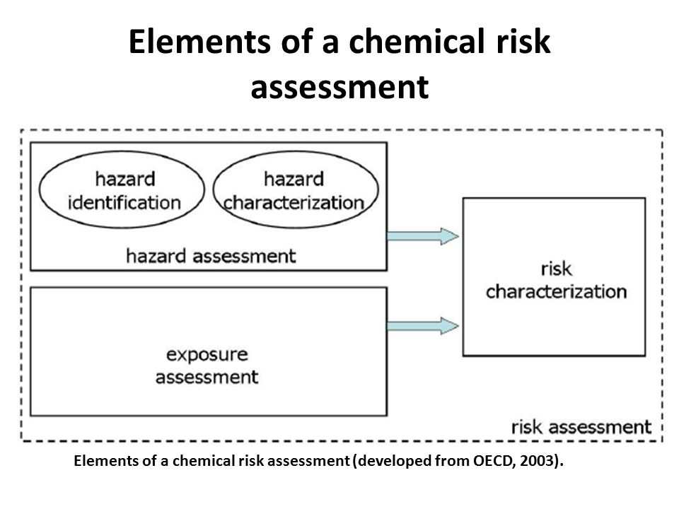 Elements of a chemical risk assessment
