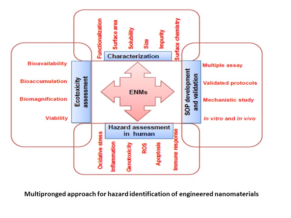 Multipronged approach for hazard identification of engineered nanomaterials