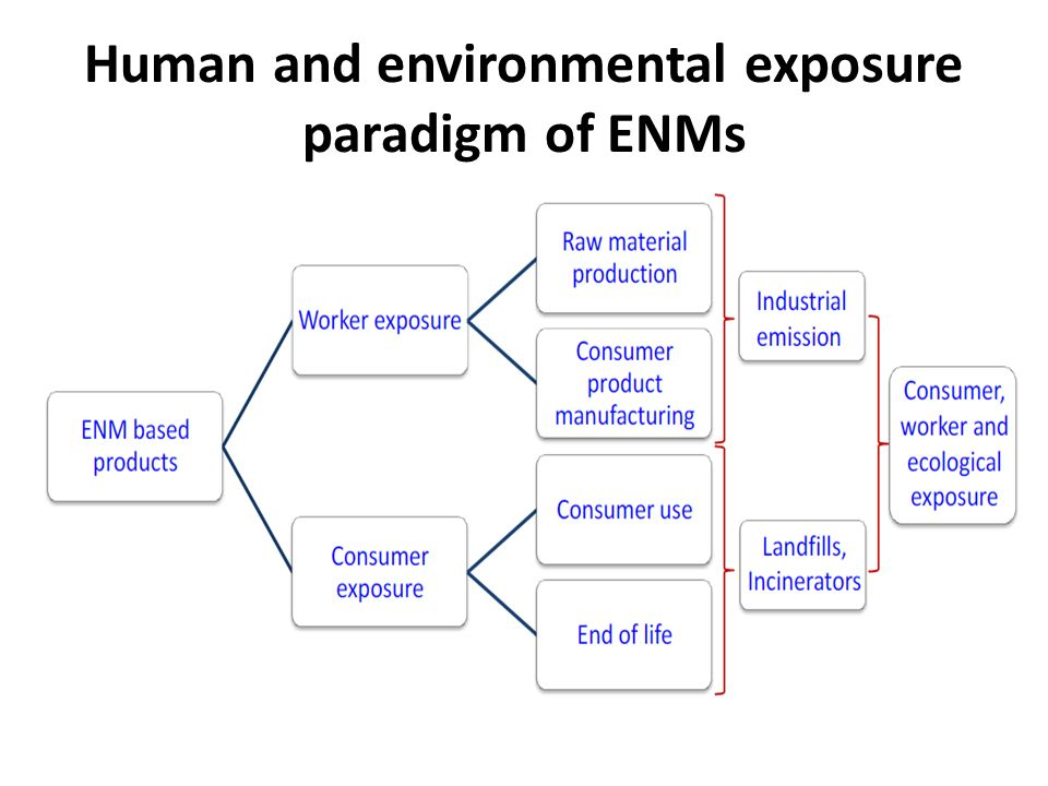 Human and environmental exposure paradigm of ENMs