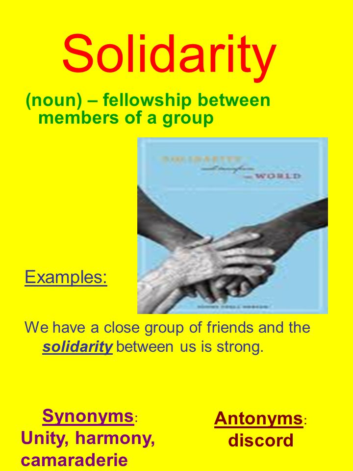 solidarity examples