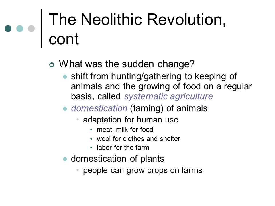 neolithic revolution examples