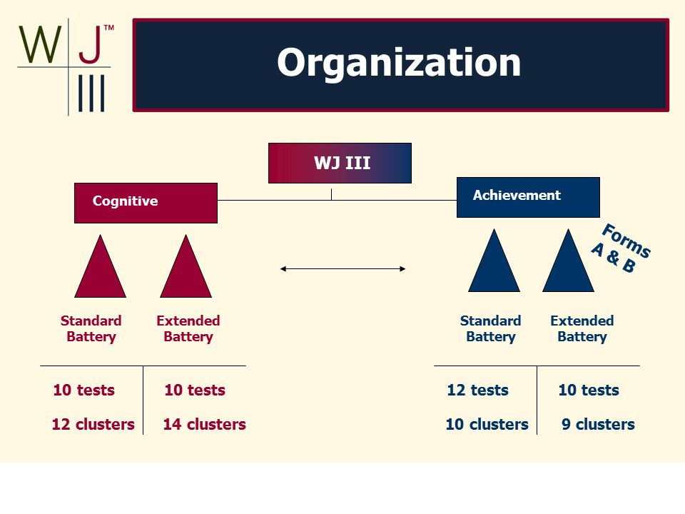 Essentials of wj iii tests of achievement assessment by mather.