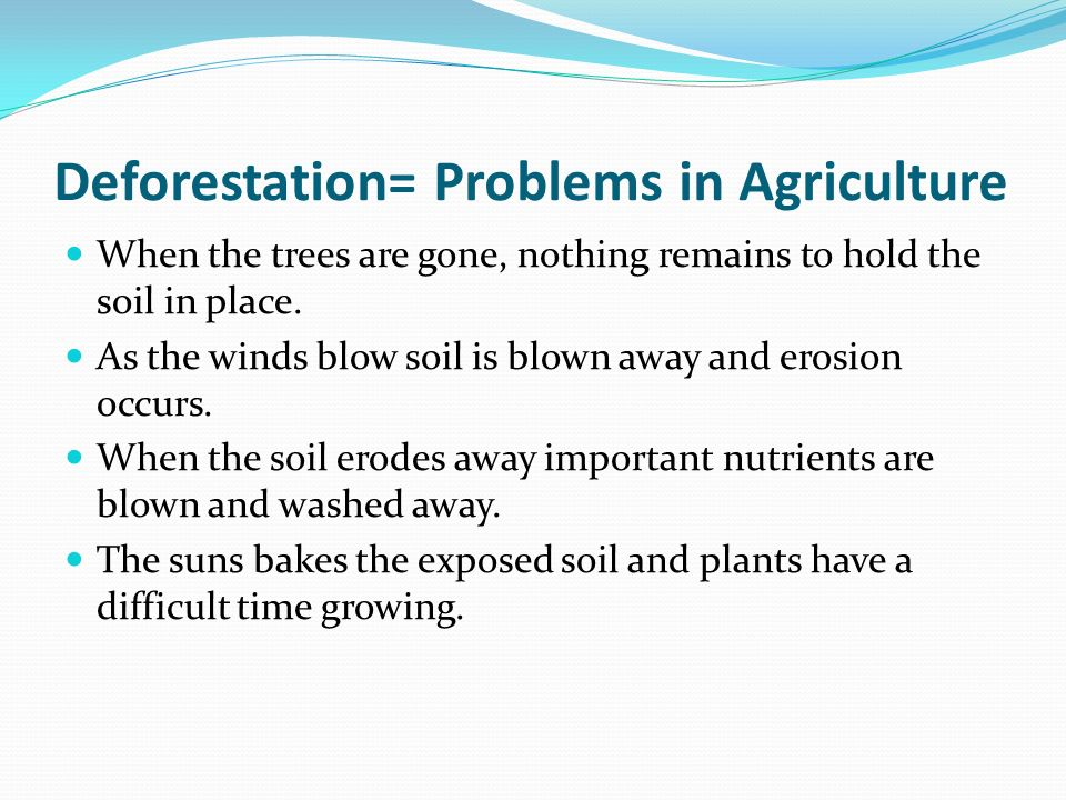Deforestation= Problems in Agriculture