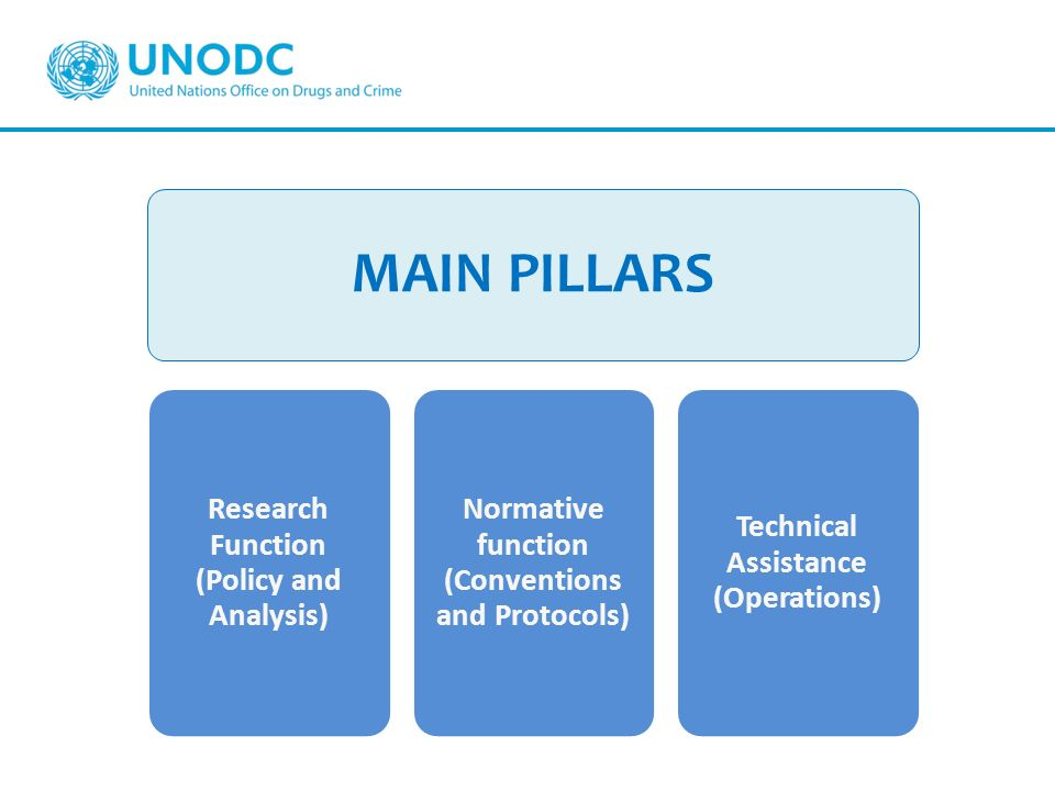 MAIN PILLARS Research Function (Policy and Analysis)