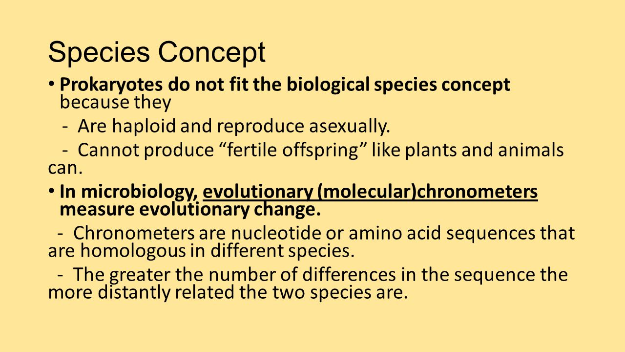 Asexual reproduction species concept in microbiology