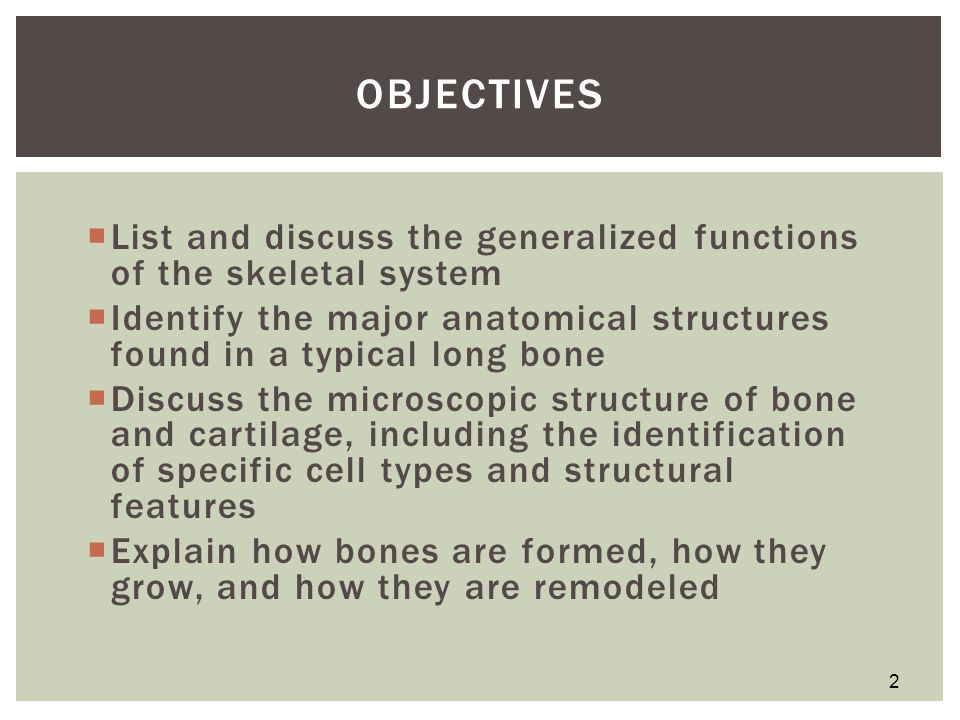 indentifying anatomical structure Anatomy of the endocrine system medical author: stephen kemp, md, phd.