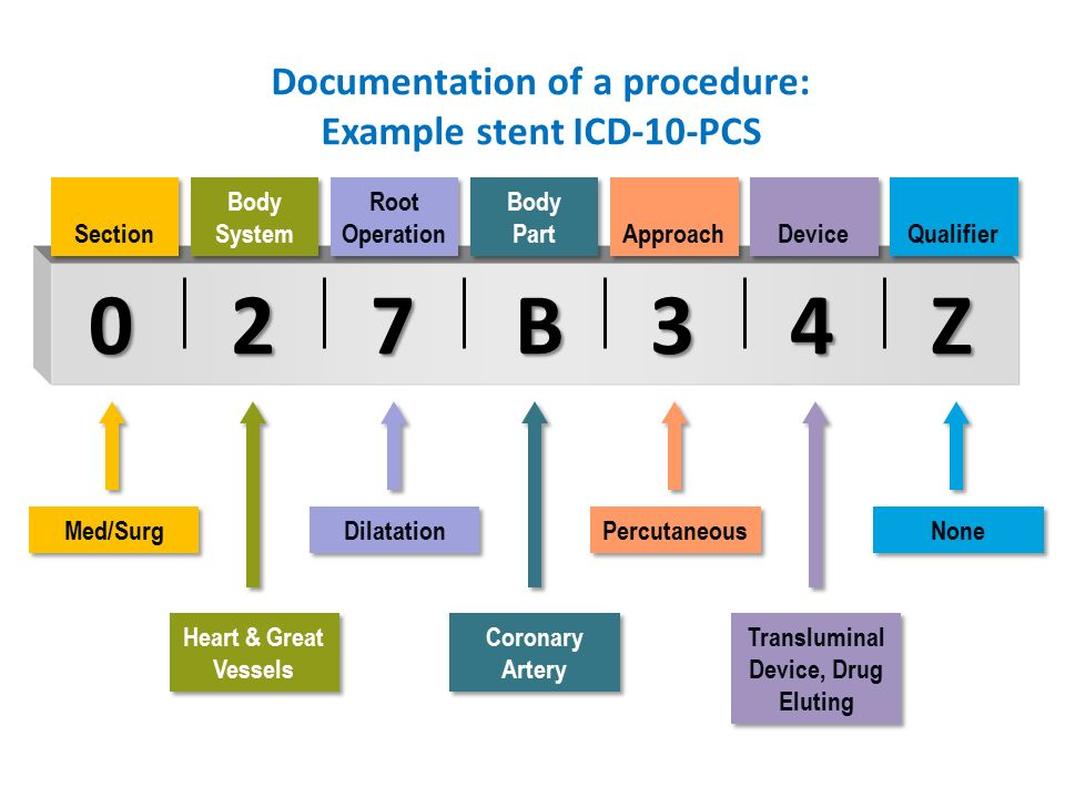 Icd 10 Education Session Ppt Download