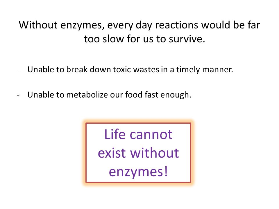 Life cannot exist without enzymes!