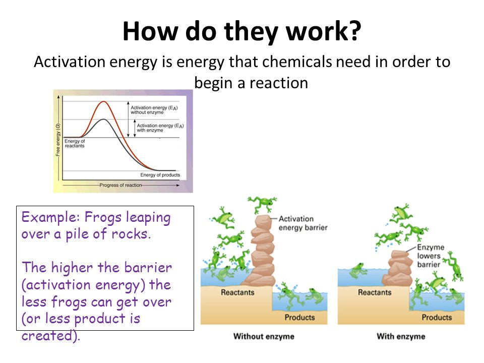 How do they work Activation energy is energy that chemicals need in order to begin a reaction. Example: Frogs leaping over a pile of rocks.