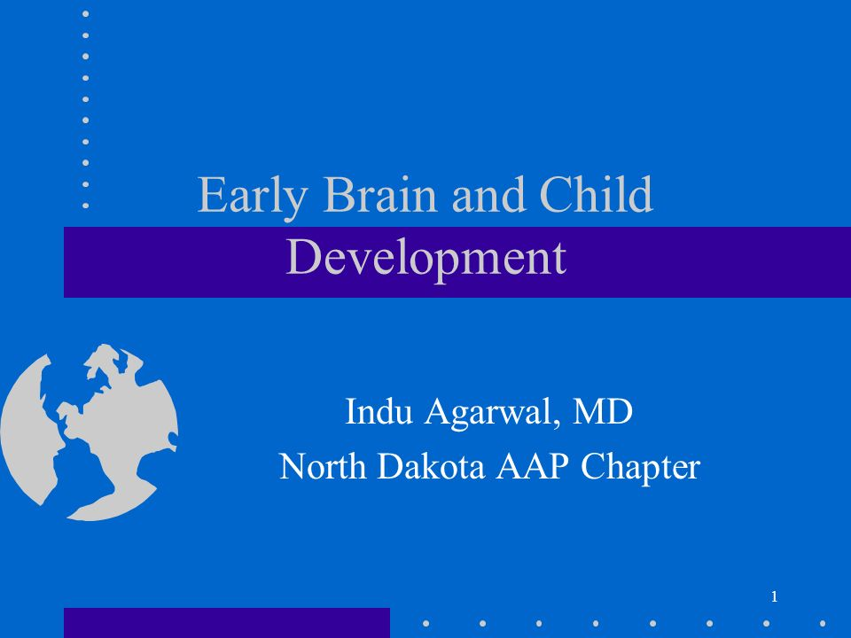 early brain and child development