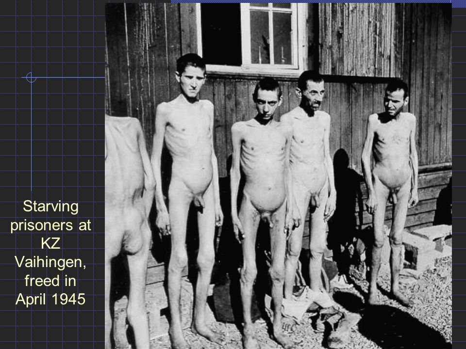 Sexy nazi boys