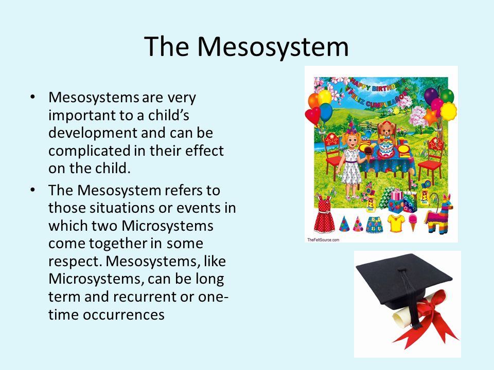what is microsystem in child development