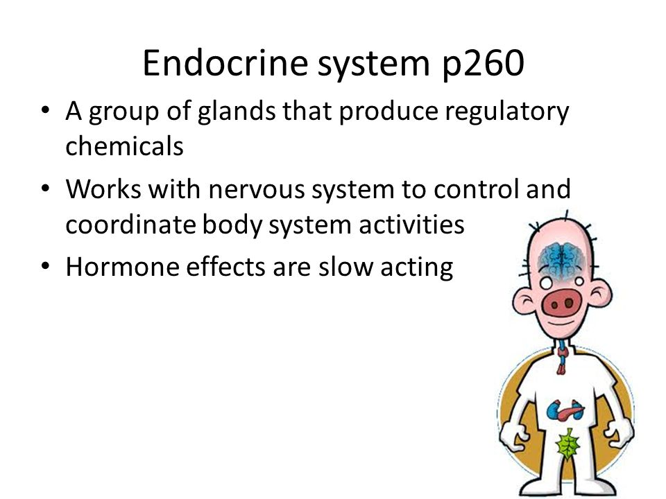 Chap 12 The Endocrine System Glands And Hormones Ppt Video Online