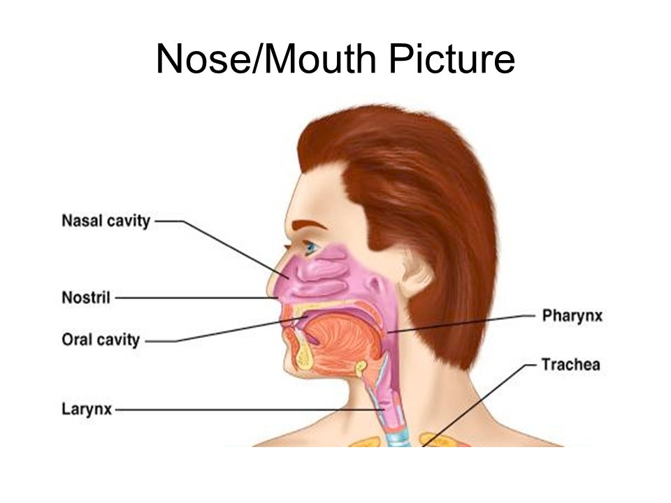 Take a deep breath and relax ppt download 4 nosemouth picture ccuart Image collections