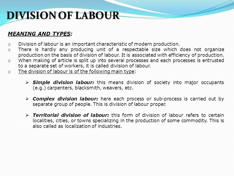 explain the term division of labour
