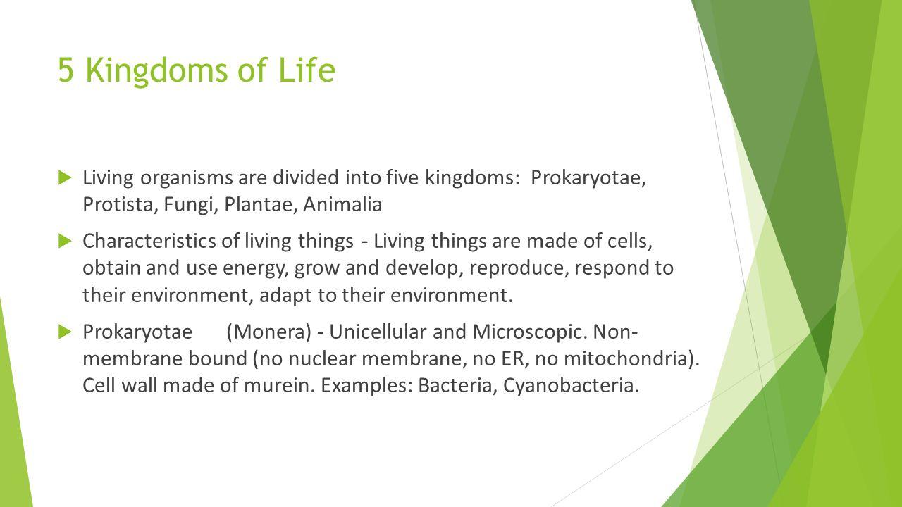 5 Kingdoms Of Life Living Organisms Are Divided Into Five Kingdoms Prokaryotae Protista