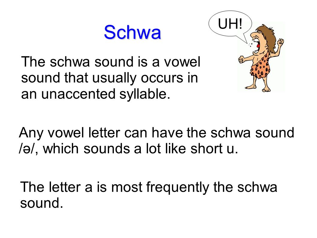 Lesson 37 Level 3 Language Arts Schwa Sentence Writing With Ms
