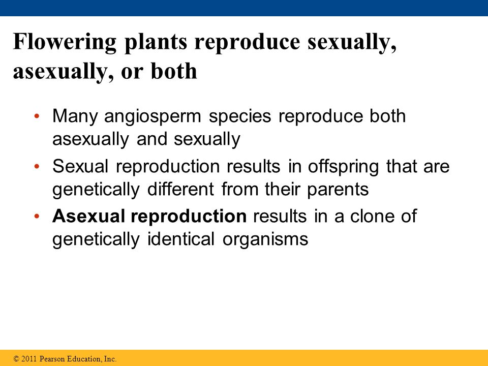Plants reproduce sexually and asexually