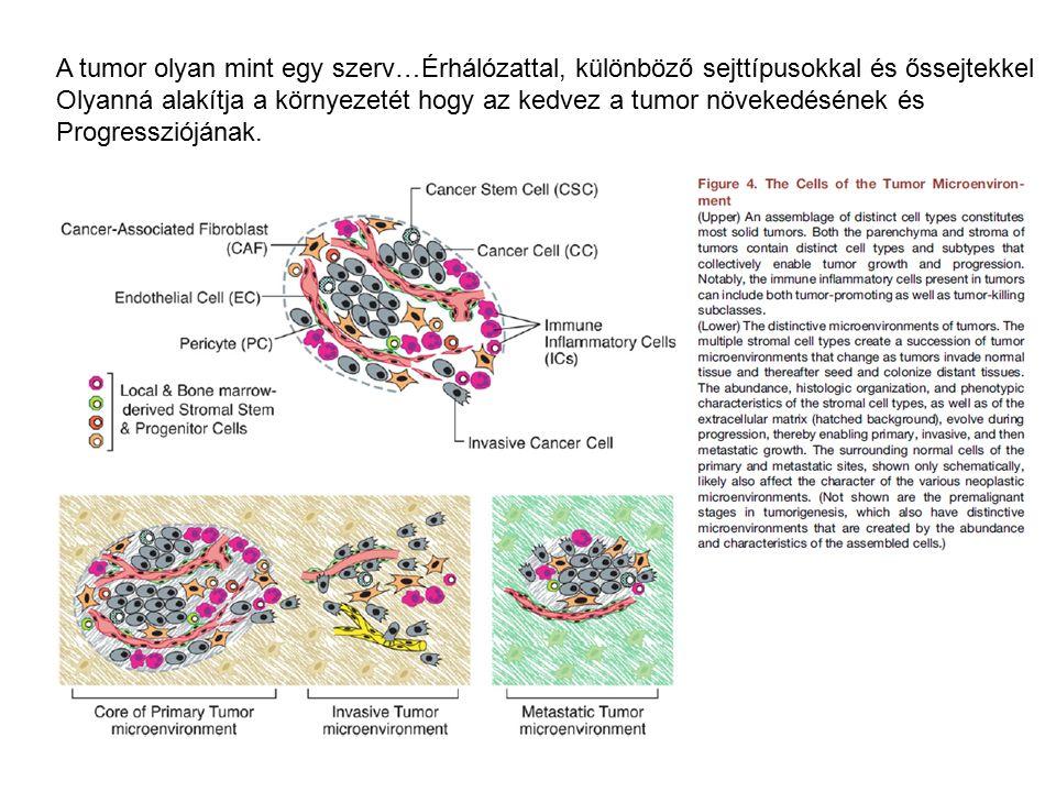 hashártyarák és immunterápia