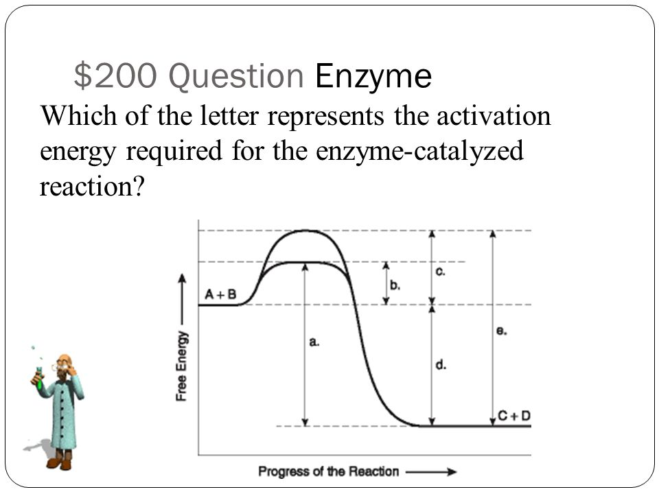 what letter represents the activation energy for the reaction topic 2 jeopardy metabolic processes q 100 q 100 q 100 432