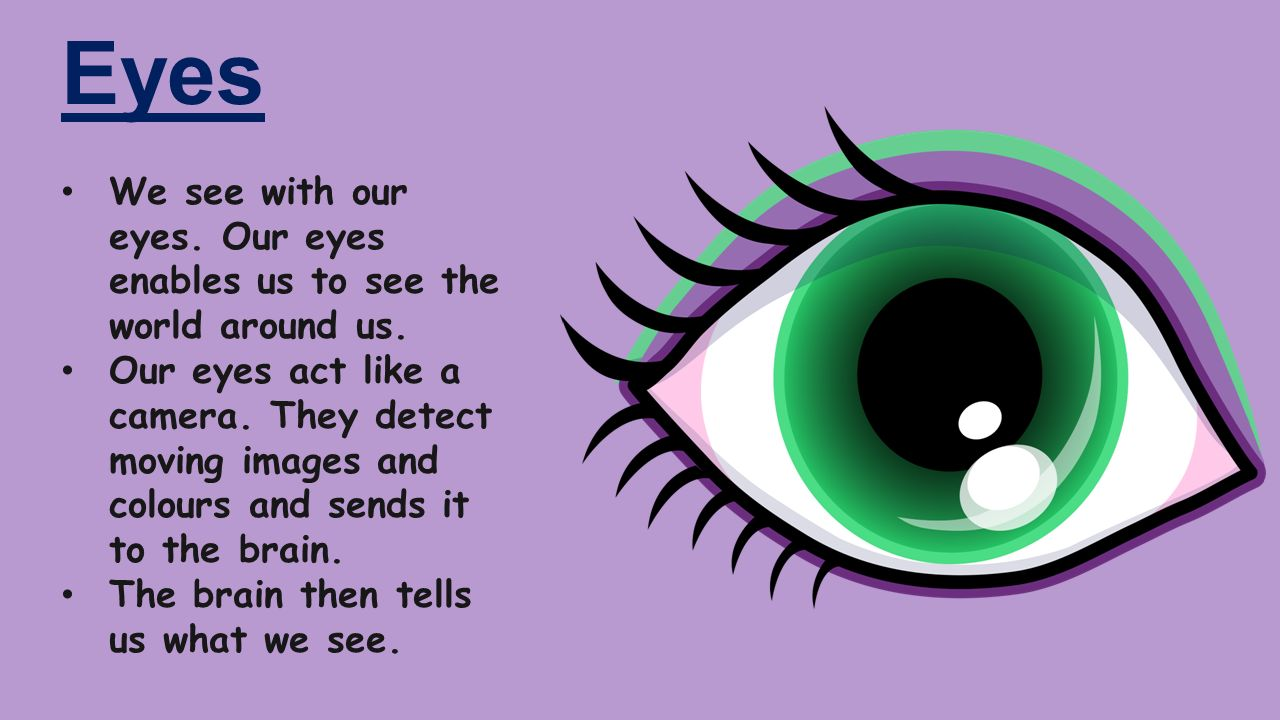 The 5 sense organs in our body are EYES, TONGUE, NOSE, EARS and SKIN ...