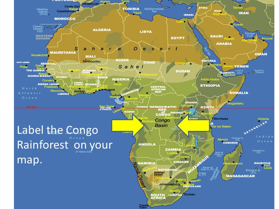 Congo Basin On Map Of Africa.Sub Saharan Africa Ppt Video Online Download