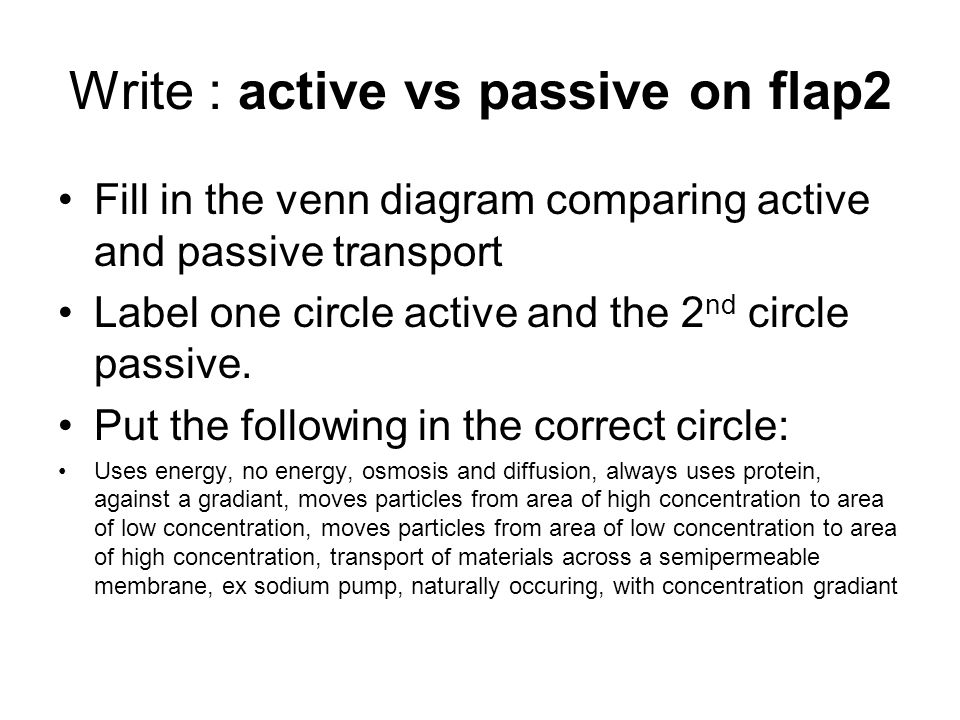 Active Vs Passive Transport Venn Diagram Off The Hill Magazine
