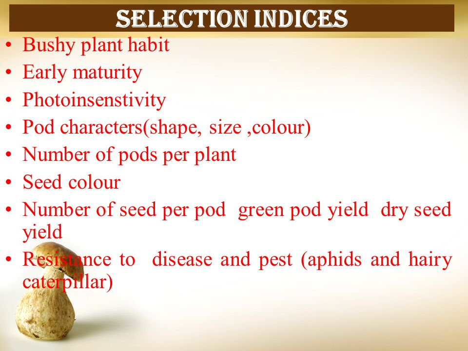 Selection indices Bushy plant habit Early maturity Photoinsenstivity