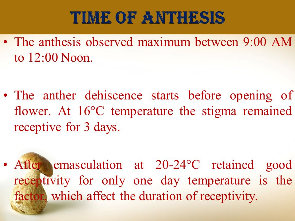 Time of anthesis The anthesis observed maximum between 9:00 AM to 12:00 Noon.
