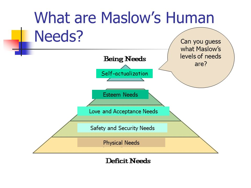 explain what maslows hierarchy of needs The order of needs in maslow's hierarchy, in order from most essential and basic to the most complex, are physiological needs, followed by security needs for safety, then social needs such as love and belonging.