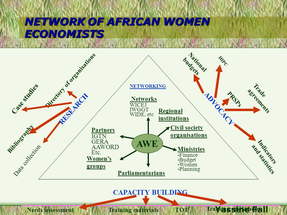 NETWORK OF AFRICAN WOMEN ECONOMISTS