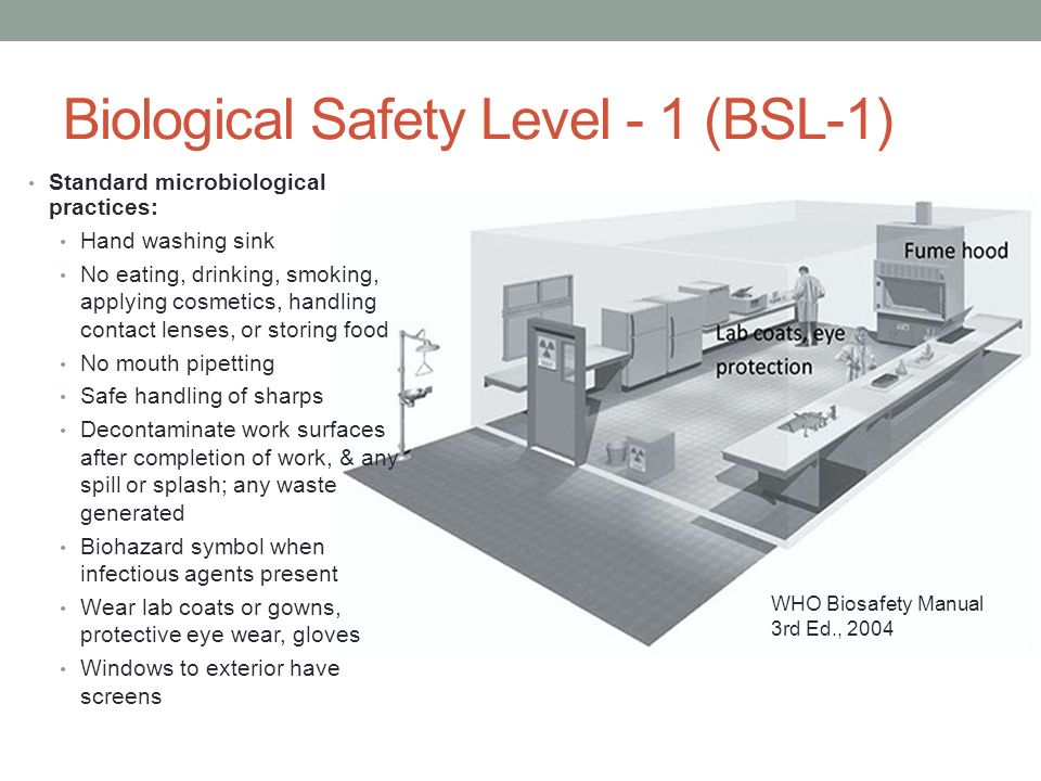 Biosafety Working Safely In A BSL 3 Laboratory Ppt Video