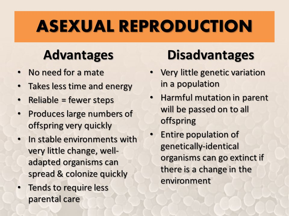 Describe 3 disadvantages of sexual reproduction over asexual reproduction