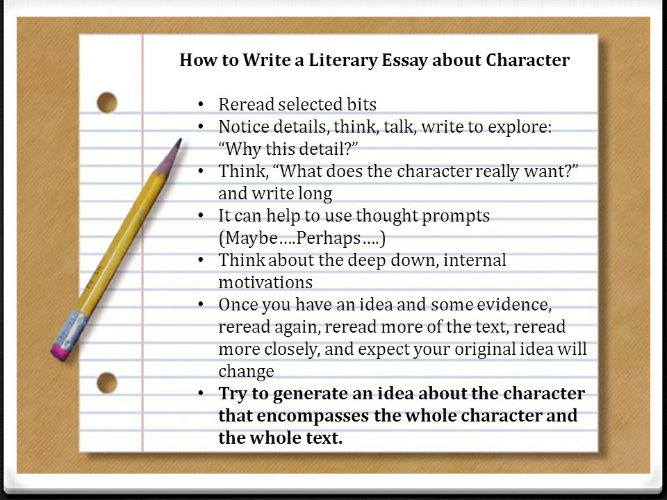 what is a literacy essay