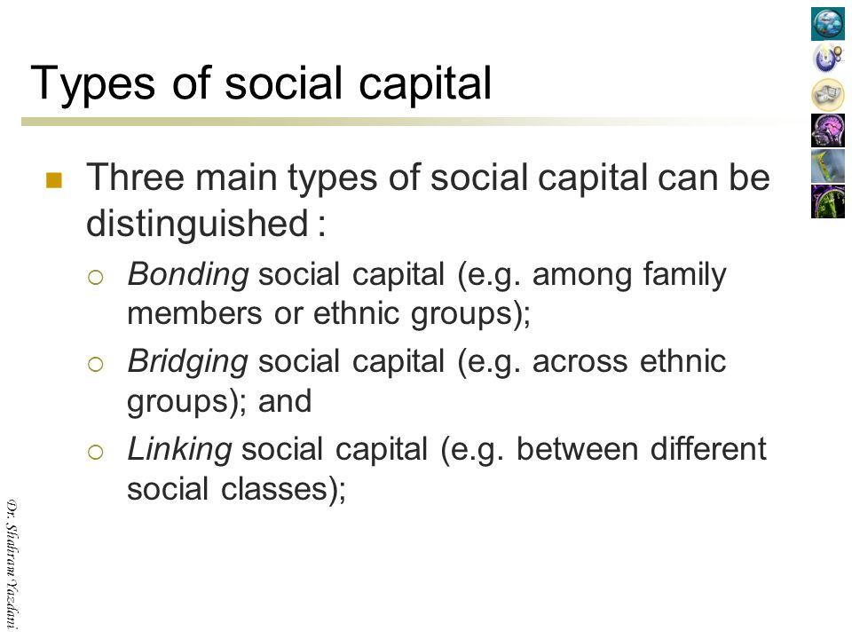 social capital definition sociology