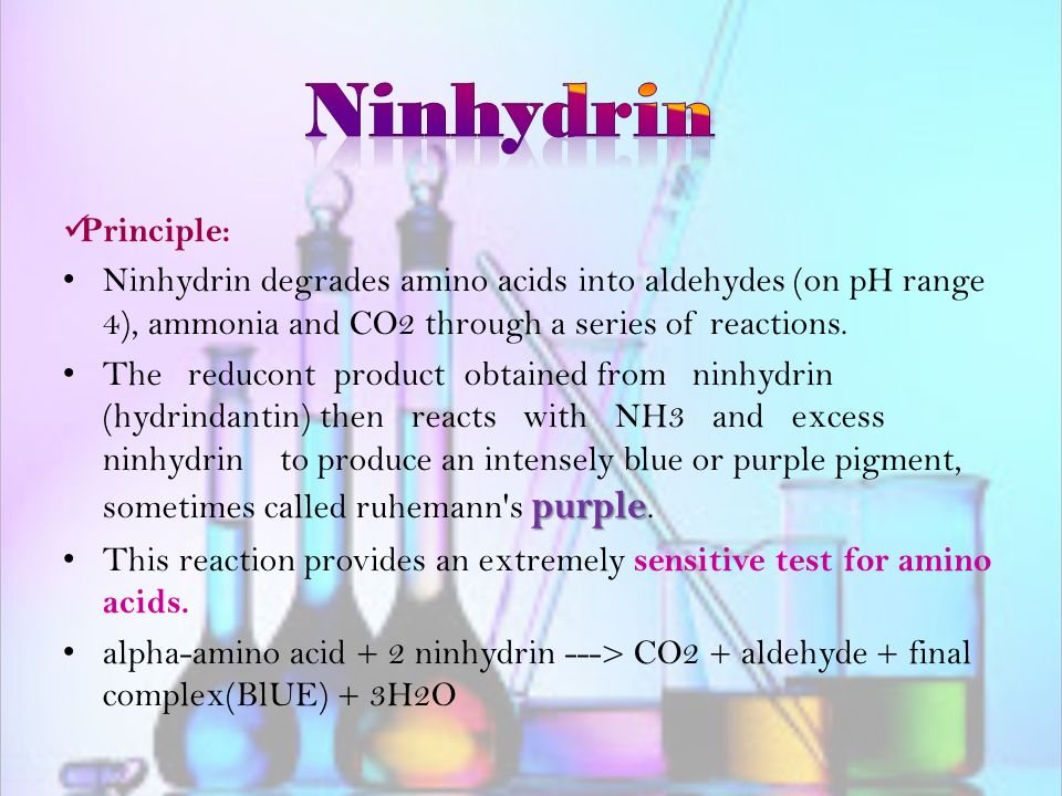 ninhydrin test results