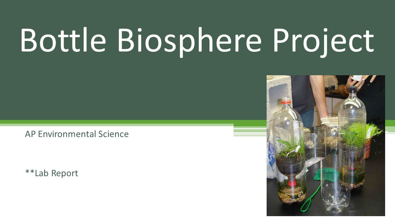 environmental science lab report Ap environmental science getting started with your science laboratory notebook lab report format all lab reports should be written in the 3rd person, past tense, passive voice.